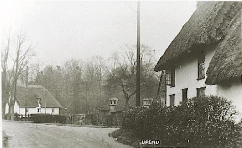 Now - Looking towards Hazel Cottage